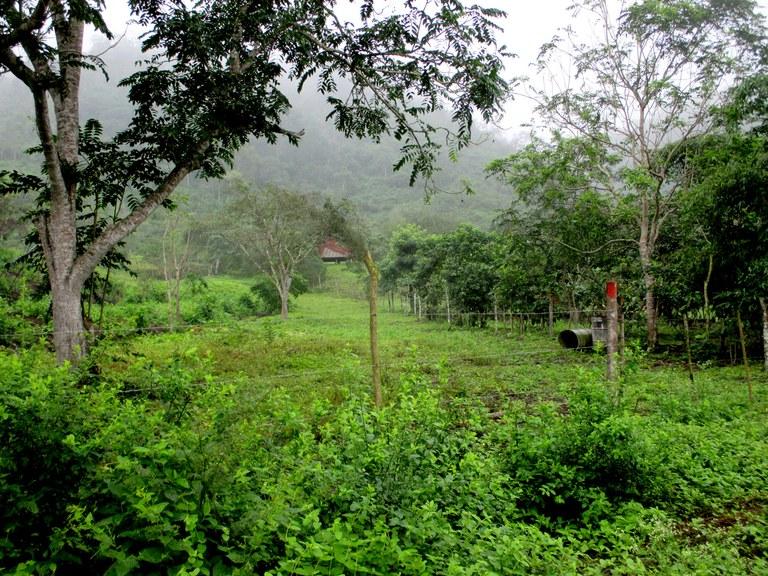 Dos-Mangas-Ecuador-property-LL1500415-4.jpg
