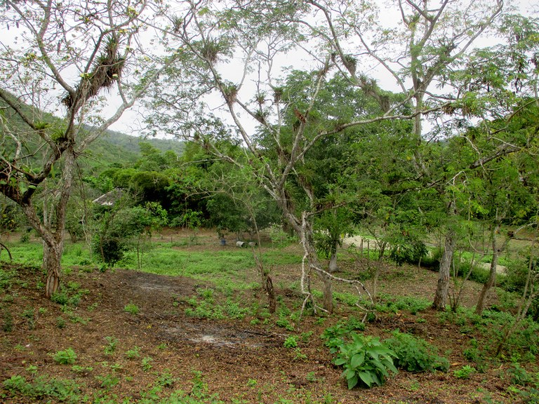Dos-Mangas-Ecuador-property-LL1500415-5.jpg