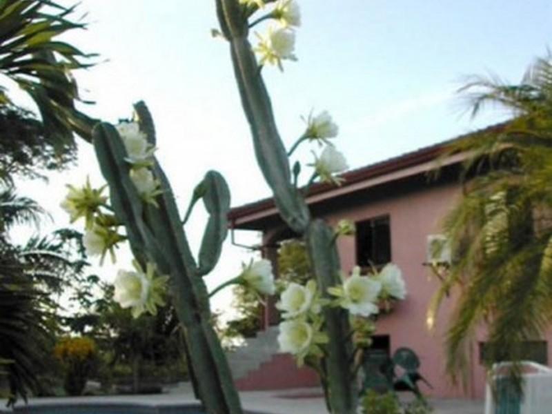 Esterillos-Costa-Rica-property-dominicalrealty4024-3.jpg