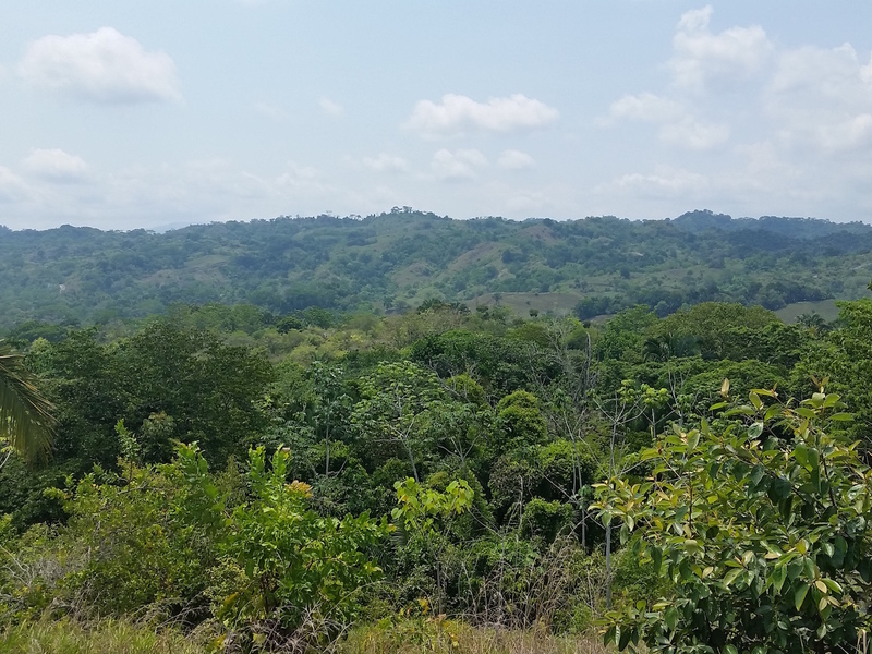 Esterillos-Costa-Rica-property-dominicalrealty6217-8.jpg