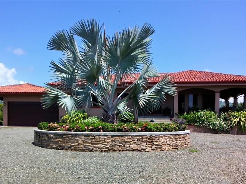 Esterillos-Costa-Rica-property-dominicalrealty6146-1.jpg