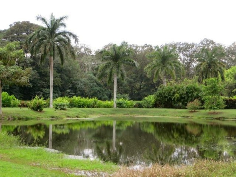 Esterillos-Costa-Rica-property-dominicalrealty6201-1.jpg