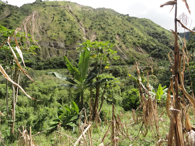 Ecuador Highlands Real Estate Farm Property