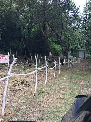 Roatan-Honduras-property-roatanlife965-1.jpg