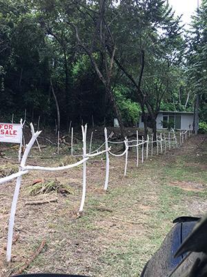Roatan-Honduras-property-roatanlife965-3.jpg