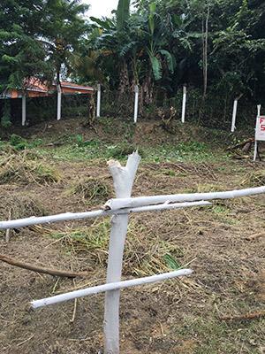 Roatan-Honduras-property-roatanlife965.jpg