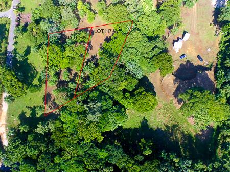 Roatan-Honduras-property-roatanlife971-2.jpg
