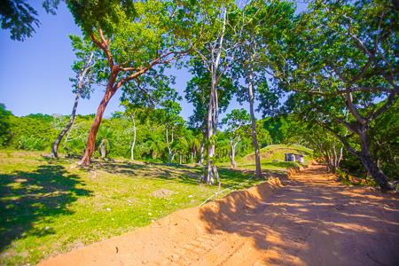 Roatan-Honduras-property-roatanlife971-3.jpg