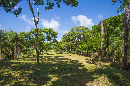 Roatan-Honduras-property-roatanlife971.jpg