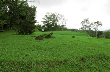Uvita Costa Rica - 50 ACRES – Ocean View Acreage With River Frontage And Primary Jungle!!