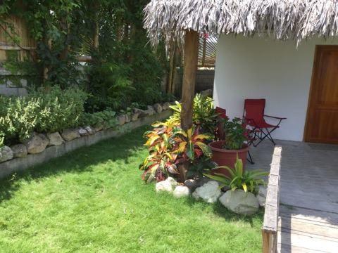 Olon-Ecuador-property-493415-5.jpg