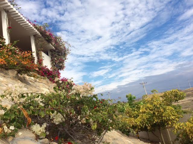 Punta-Blanca-Ecuador-property-494054-4.jpg