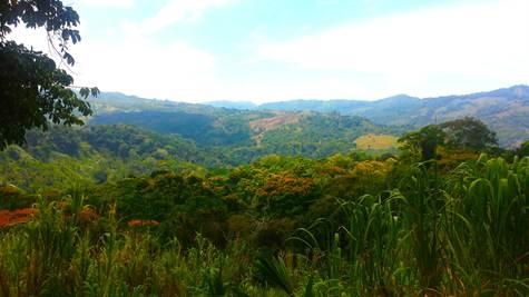 Platanillo-Costa-Rica-property-costaricarealestatePLT067-1.jpg
