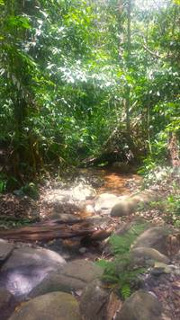 Platanillo-Costa-Rica-property-costaricarealestatePLT067-2.jpg