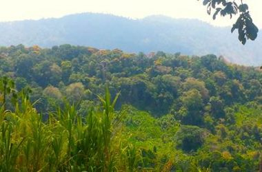 Platanillo Costa Rica - 55.5 ACRES – Multiple Waterfalls, Municipal Water, Electric, Easy Access, 15 Minutes From The Beach!!!