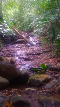 Platanillo-Costa-Rica-property-costaricarealestatePLT067-7.jpg