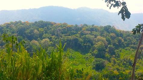 Platanillo-Costa-Rica-property-costaricarealestatePLT067.jpg