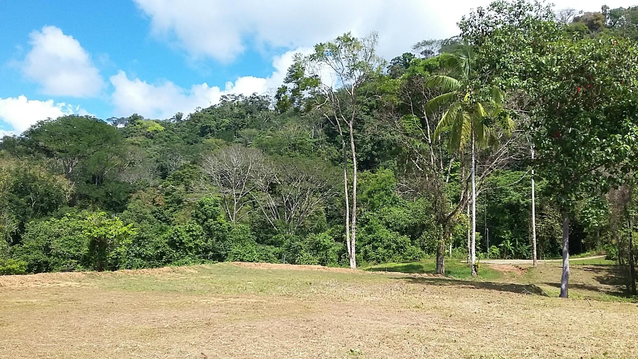 Uvita-Costa-Rica-property-costaricarealestateUVI179-6.jpg