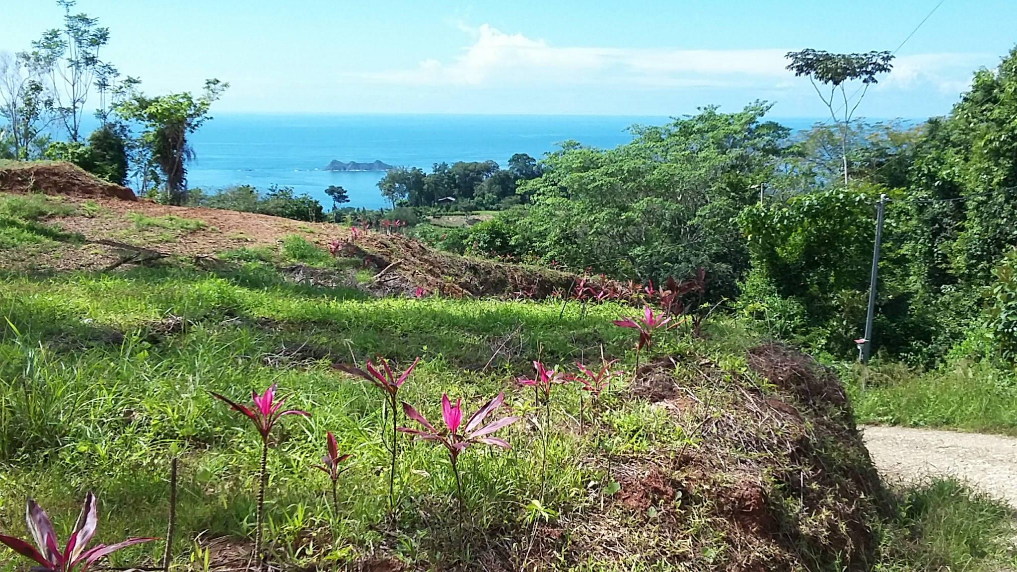 Uvita-Costa-Rica-property-costaricarealestateUVI179-8.jpg