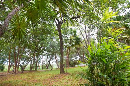 Roatan-Honduras-property-roatanlife992-1.jpg