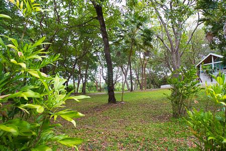 Roatan-Honduras-property-roatanlife992-2.jpg