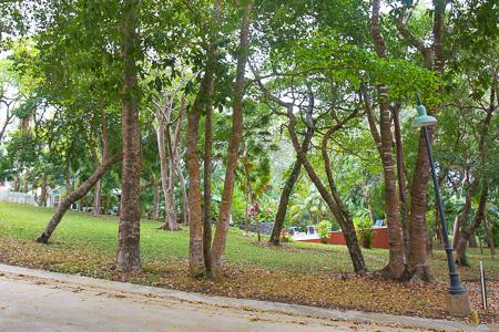 Roatan-Honduras-property-roatanlife992-5.jpg