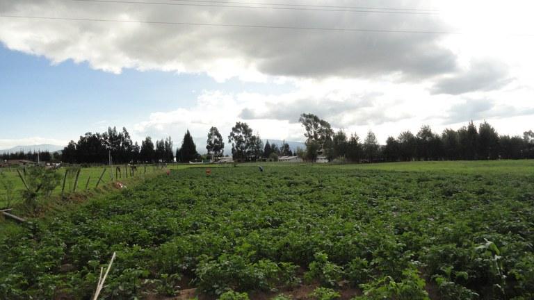 Cayambe-Ecuador-property-LL1700072-2.jpg
