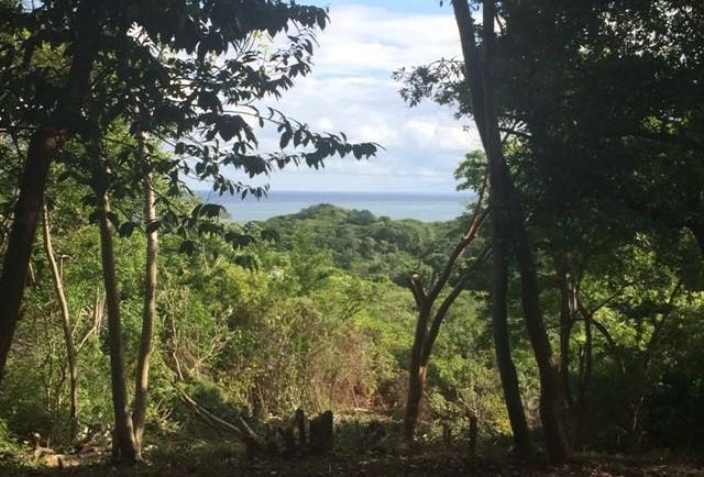 Roatan-Honduras-property-roatanlife995.jpg