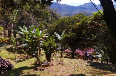Anton Valley Panama - Topical Forest Estate in El Valle de Antón