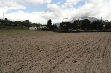 Atuntaqui Ecuador - Santa Rosa de Moras-Atuntaqui-Imbabura: Countryside Agricultural Land/Farm For Sale in Atuntaqui